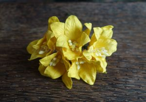 Лилиуми, жълти, 5бр., 37.5 мм