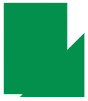 """Огледален картон """"Flourishing Green"""", 5л., A4, 250гр."""
