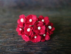 Цветенца, червени, 15мм