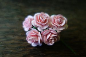 Рози, розови, 20мм