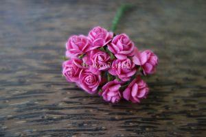 Рози, цвят циклама, 10мм