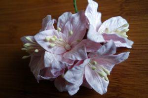 Бледорозови лилиуми, 5бр., 37.5 мм
