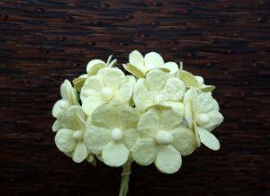 Цветенца, бледожълти, 15 мм