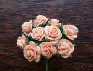 Рози, цвят праскова, 15мм