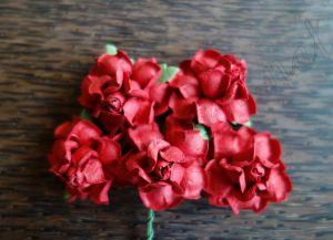 Къдрави рози, червени, 35мм