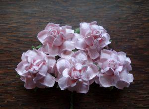 Къдрави рози, светлорозови, 35мм