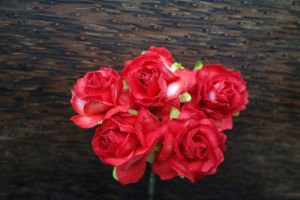 Пухкави червени рози, 30мм