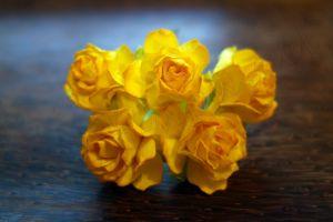 Пухкави жълти рози, 30мм