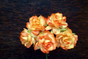 Пухкави оранжево-жълти рози, 30мм