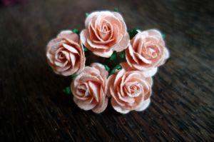 Рози, цвят праскова, 25мм