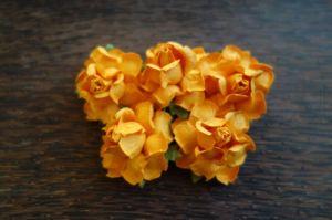 Къдрави рози, мандарина, 35мм
