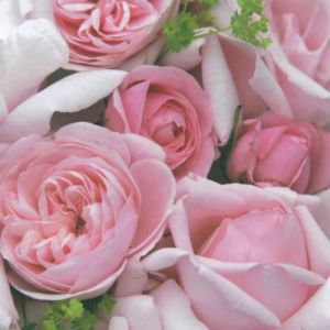 "Салфетки ""Шармантни рози"", 20бр."