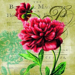 """Салфетки """"Червена роза"""", 20бр."""