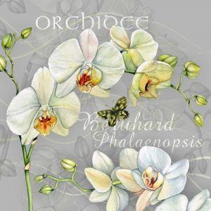 """Салфеткa """"Орхидея"""", 1бр."""