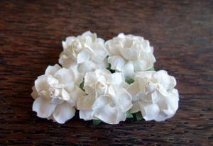 Къдрави рози, бели, 35мм