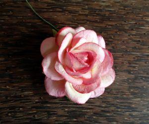 Роза, розово-кремава, 45мм