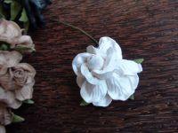 Къдрава роза, 50мм, бяла.