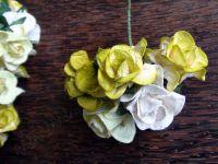 Къдрави рози от хартия, 37,5 мм, зелен микс.