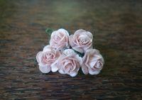 Рози, пудра, 20мм