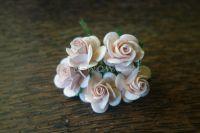 Рози, пудра, 25мм