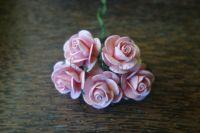 Рози, корал, 25мм