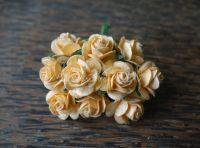 Рози, кайсия, 15мм