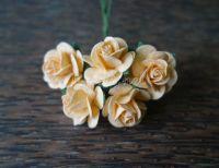 Рози, кайсия, 20мм