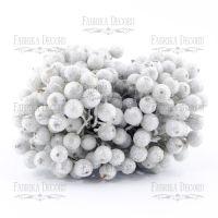 Заскрежени плодчета, сребристи, 20бр., 12мм