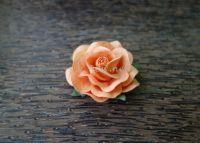 Роза, праскова, 45 мм