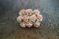 Рози, цвят праскова, 10мм
