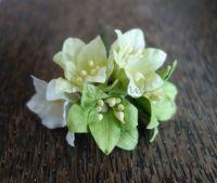 Лилиуми, зелен микс, 5бр., 35мм