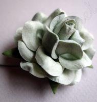 Роза цвят морска пяна, 50 мм