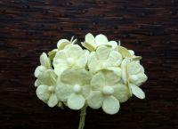 Бледожълти цветя от мълбери хартия, 15 мм