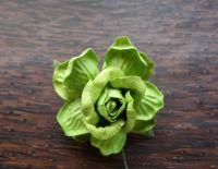 Къдрава роза, 50мм, зелена.