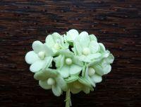Цветенца от мълбери хартия, блeдозелени, 15мм