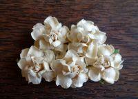 Къдрави рози, кремави, 35мм