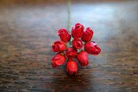 Пъпки на роза, цикламени, 10бр.