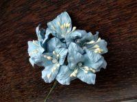 Сини лилиуми, 5бр., 37.5мм