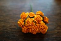 Мълбери рози в цвят мандарина, 15мм