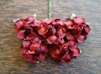 Къдрави рози, бордо, 35мм
