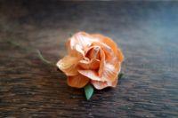 Къдрава роза, 50мм, цвят праскова.