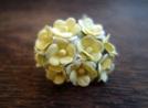 Цветенца, жълто-бели, 15мм