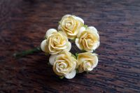 Кремави цветя от мълбери хартия, 20 мм
