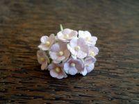Цветенца, бледорозово-бели, 15мм