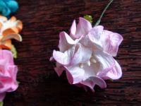 Гардения от хартия, 40 мм, розово-бяла.
